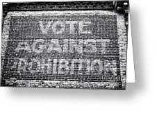 Vote Against Prohibition I Greeting Card
