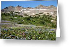 Wa, Goat Rocks Wilderness, Wildflower Greeting Card