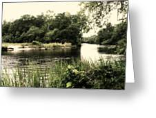 Waccamaw River Greeting Card