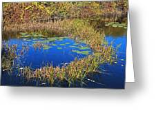 Wachusett Meadows 2 Greeting Card