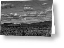 Wachusett Mountain Bw Greeting Card
