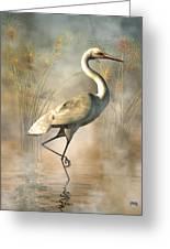 Wading Egret Greeting Card