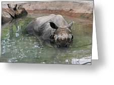 Wading Rhinos Greeting Card