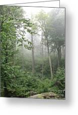 Waft Of Mist - Shenandoah Park Greeting Card
