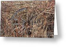 Wagon Wheel_7438 Greeting Card