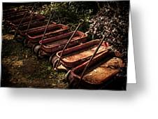Wagons Of Yesterday Greeting Card