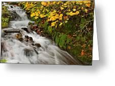 Wahkeena Falls At Columbia River Gorge In The Fall Greeting Card