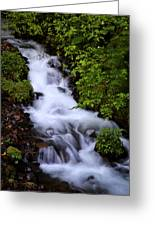 Wahkeena Falls In Oregon Greeting Card