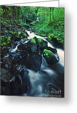 Wahkeenah Falls Columbia River Gorge Nsa Oregon Greeting Card