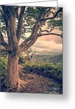 Waihee Ridge Trail Maui Hawaii Greeting Card