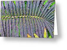 Waikamoi 32 Greeting Card