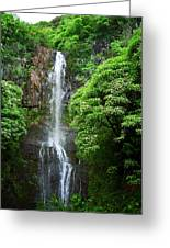 Waikani Falls At Wailua Maui Hawaii Greeting Card