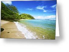 Waikoko Beach Shore Greeting Card