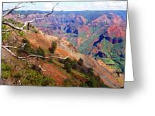 Waimea Canyon 1 Greeting Card