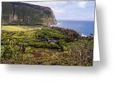 Waipi'o Valley Greeting Card