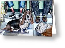 Waiting At The Vet's Office Greeting Card by Chris Dreher