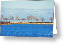 Waiting For Summer - Trees At The Edge Greeting Card by Mary Machare