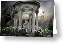 Wake Up My Sleepy White Roses - Sunlight Version Greeting Card