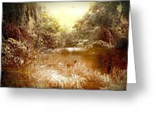 Walden Pond In Pennsylvania Greeting Card