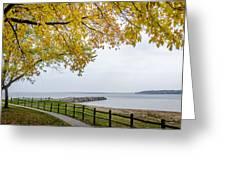 Walk Along The Shoreside Greeting Card