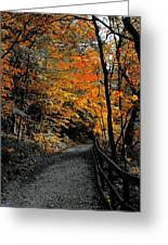 Walk In Golden Fall Greeting Card