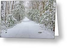Walk In Snowy Woods Greeting Card