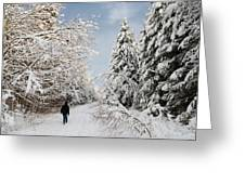 Walk In The Winterly Forest With Lots Of Snow Greeting Card
