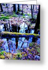 Walk Right Into The Nature's Fairytale With Me  Greeting Card