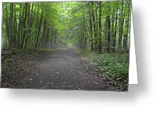 Walk Of Life Greeting Card by Cim Paddock