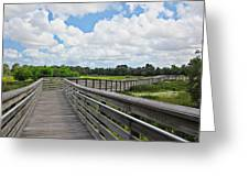 Walk On Wetlands Greeting Card