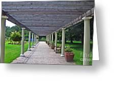 Walk The Path Greeting Card