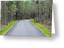 Walk Through The Forest Greeting Card