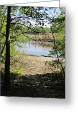 Walk To The Water Side Greeting Card by Good Taste Art