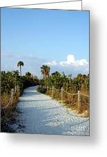 Walk Way To Beach Greeting Card