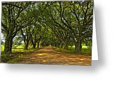 Walk With Me Greeting Card by Steve Harrington
