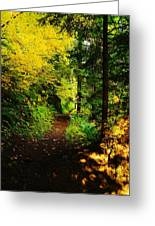 Walking An Autumn Path Greeting Card
