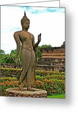 Walking Buddha Image In Wat Sa Si In Sukhothai Historical Park-t Greeting Card