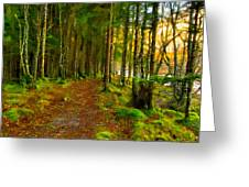 Walking In A Scottish Highland Wood Greeting Card by Mark E Tisdale