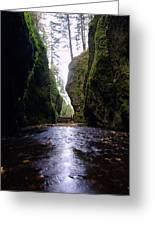Walking In The Gorge Greeting Card