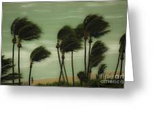 Walking In The Wind Greeting Card