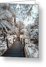 Walking Into The Infrared Jungle 3 Greeting Card