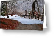 Walking Into Winter Greeting Card