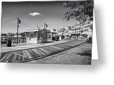 Walking On The Boardwalk In Black And White Walt Disney World Greeting Card