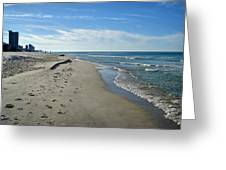 Walking The Beach Greeting Card