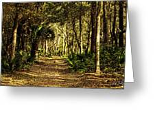 Walking The Bluff Artistic Greeting Card
