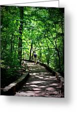 Walking The Path  Greeting Card