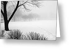 Walking Through A Winter Wonderland Greeting Card