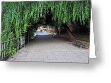 Walkway By The River Greeting Card