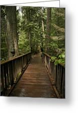 Walkway Into Paradise Greeting Card