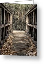 Walkway Out Greeting Card